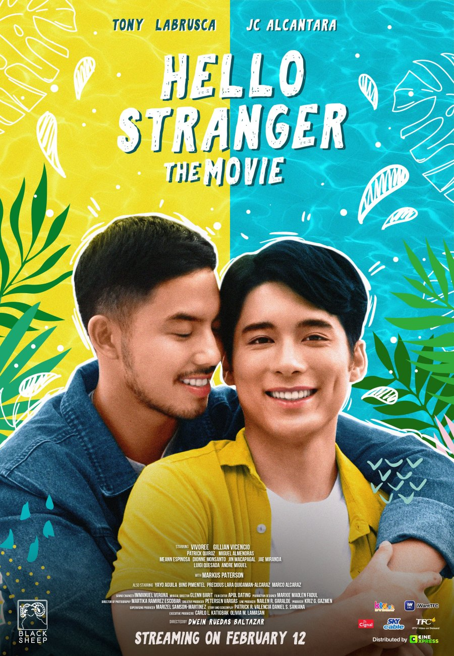 HelloStrangerTheMovie